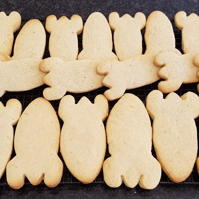 lemon cardamom cookies 1.jpg